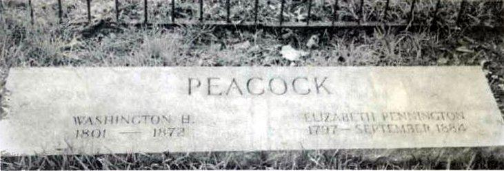 PeacockFamilyCemetery-PeacockWashington-ElizabethPennington